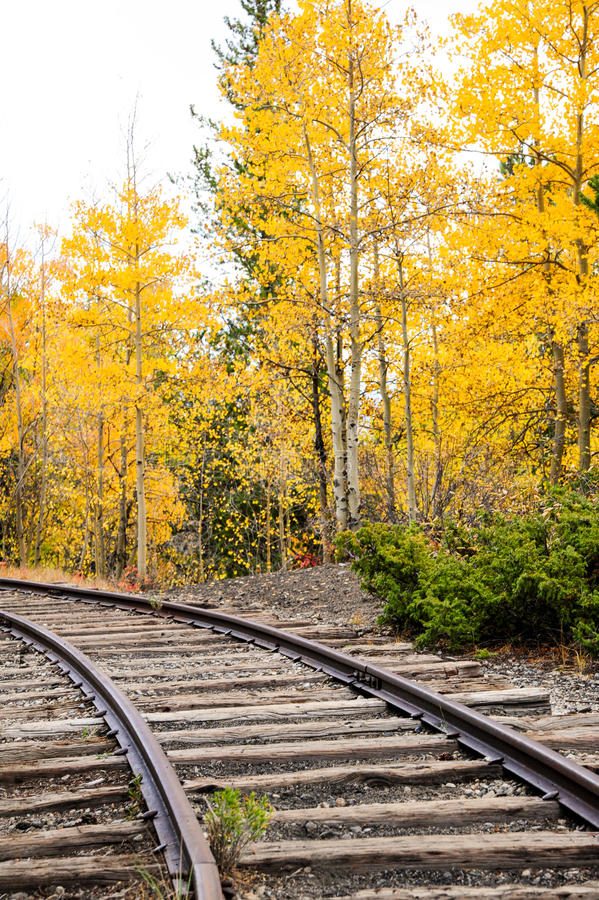 Autumn Train Tracks imagens de stock royalty free