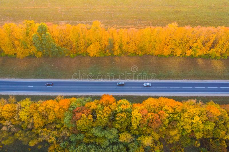 Road with moving cars. Aerial view. Straight road with trees with yellow foliage royalty free stock photo