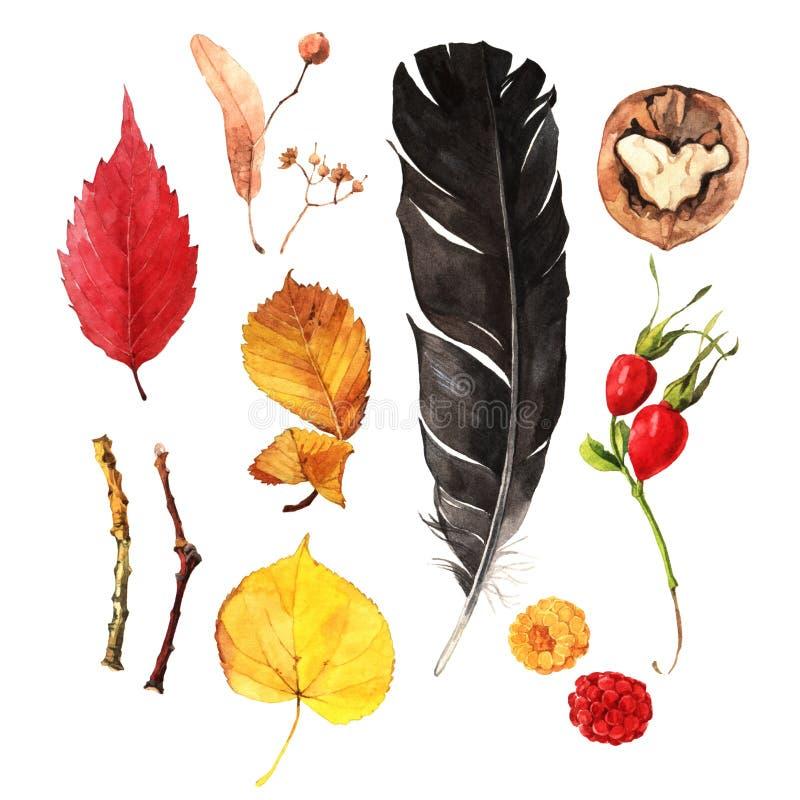 Autumn Treasures stock de ilustración