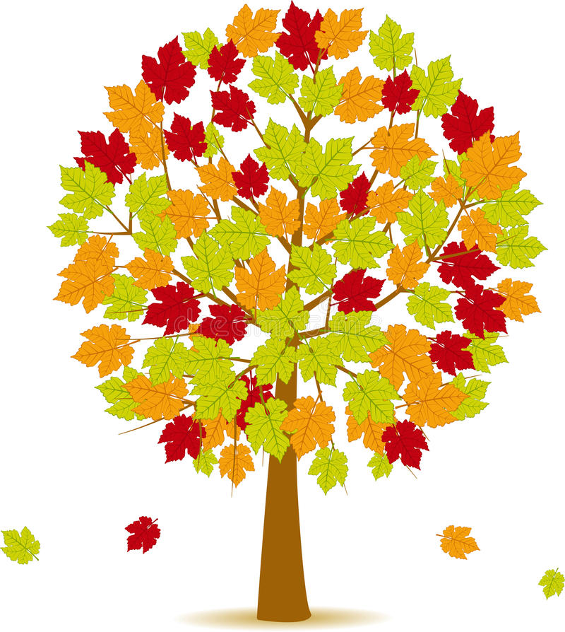 Free Autumn Tree 14 Royalty Free Stock Images - 45255129