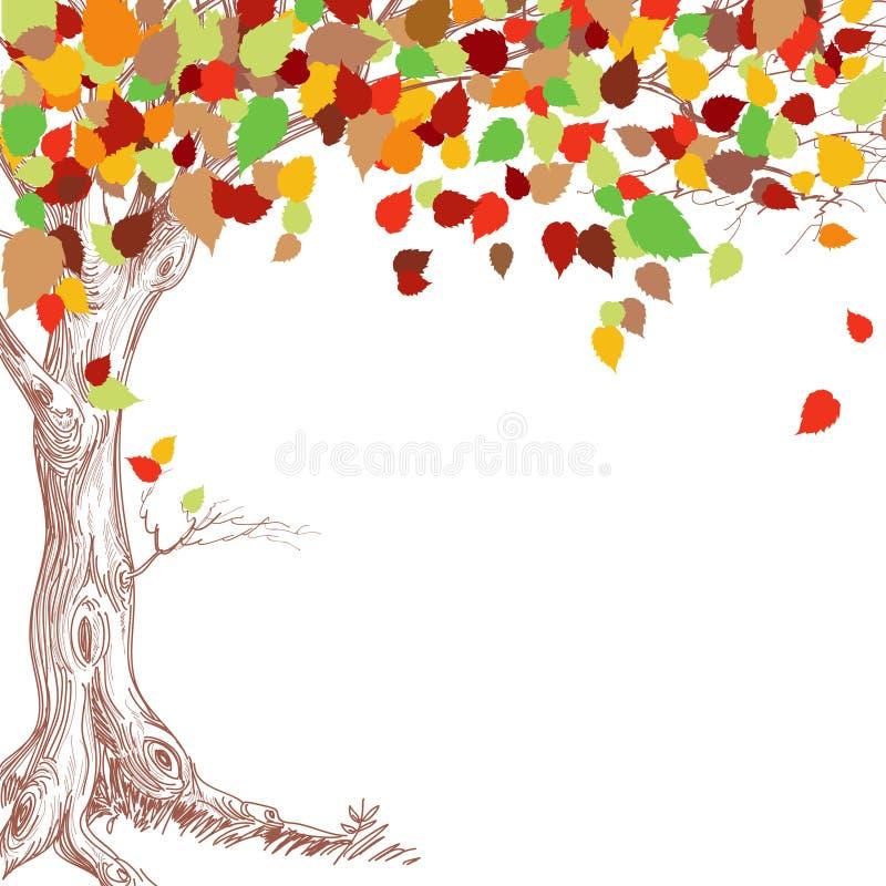 Free Autumn Tree Stock Images - 20928294