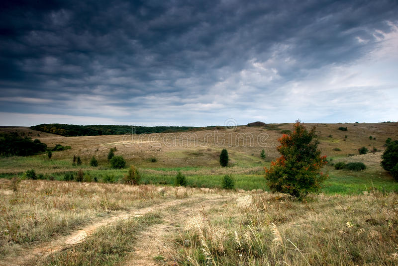 Download Autumn Tree Along The Rural Rod Stock Image - Image: 10931307