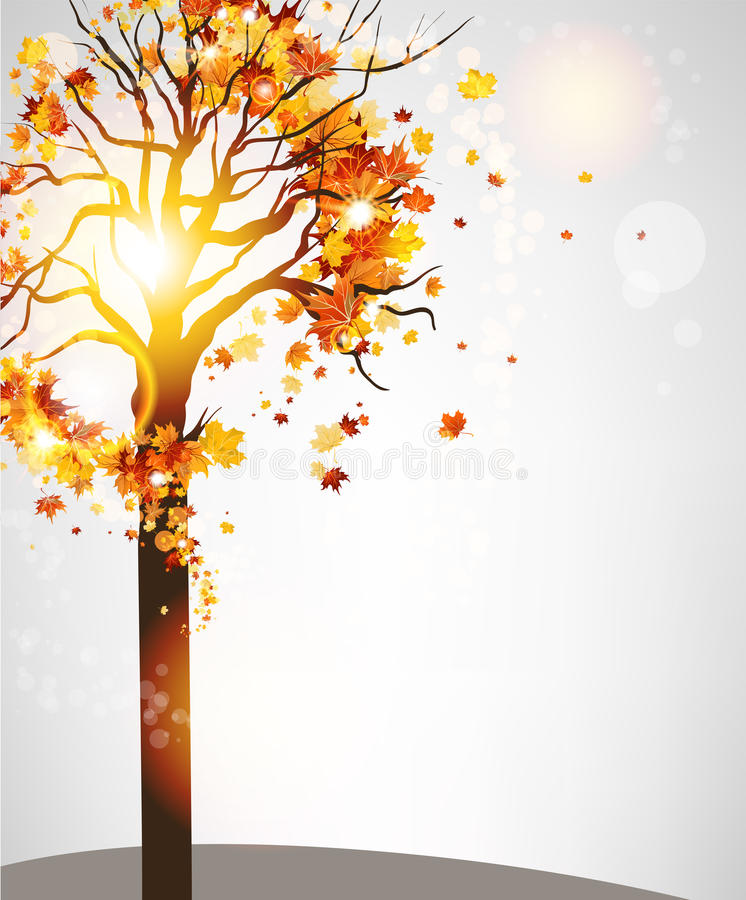 Autumn tree with beautiful leaves royalty free illustration