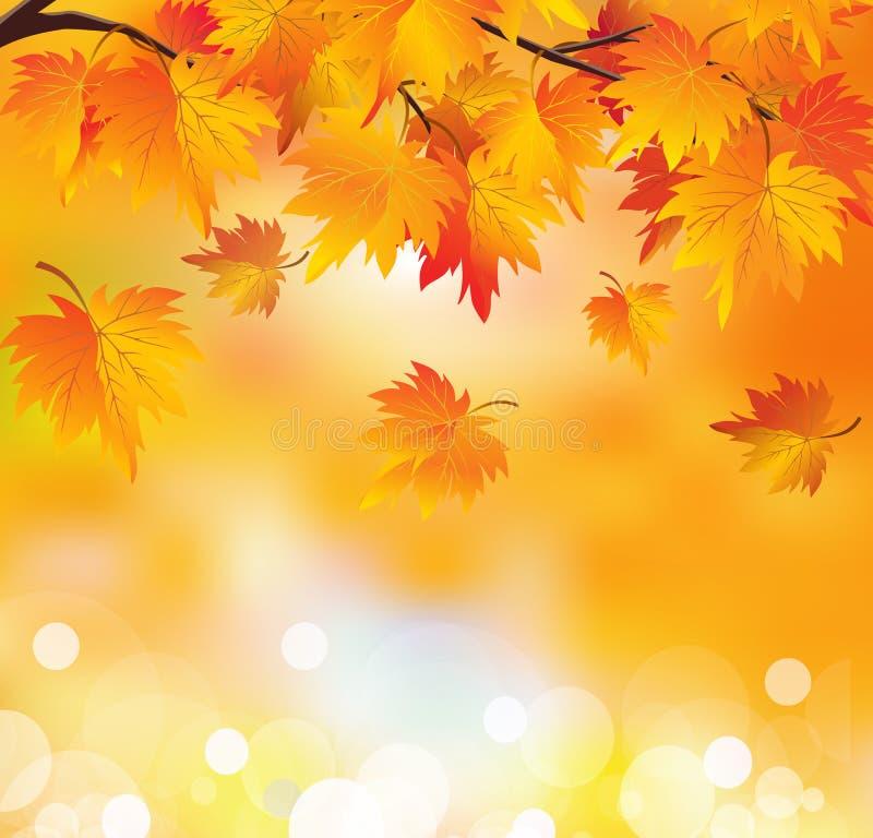Autumn Tree Branch Stock Illustration. Illustration Of