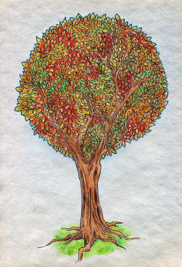 Download Autumn tree stock illustration. Illustration of branches - 30799616