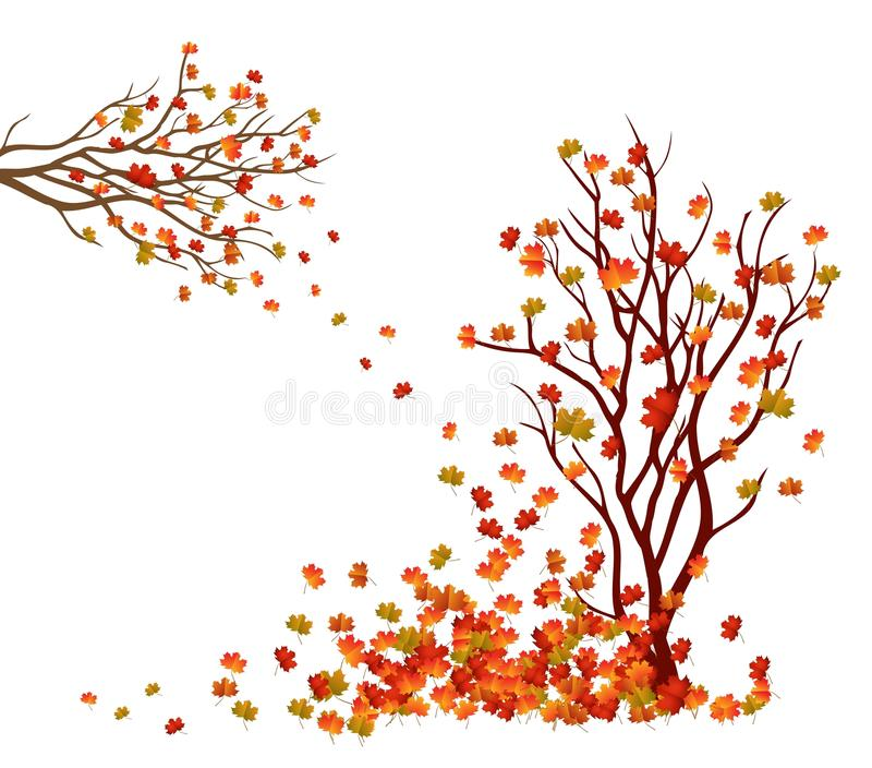 Autumn tree. Fall Leaves Background royalty free illustration