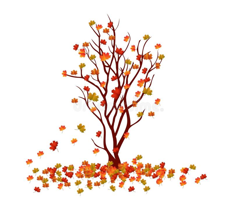 Autumn tree. Fall Leaves Background.  stock illustration