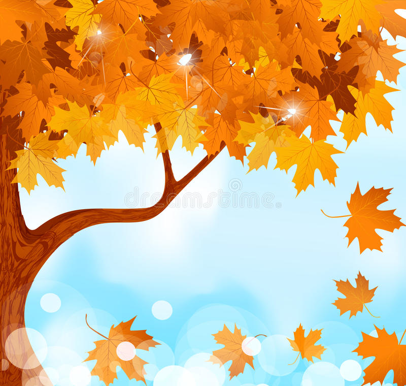 Download Autumn Tree Maple Leaves Against The Blue Sky Stock Image - Image: 20153971