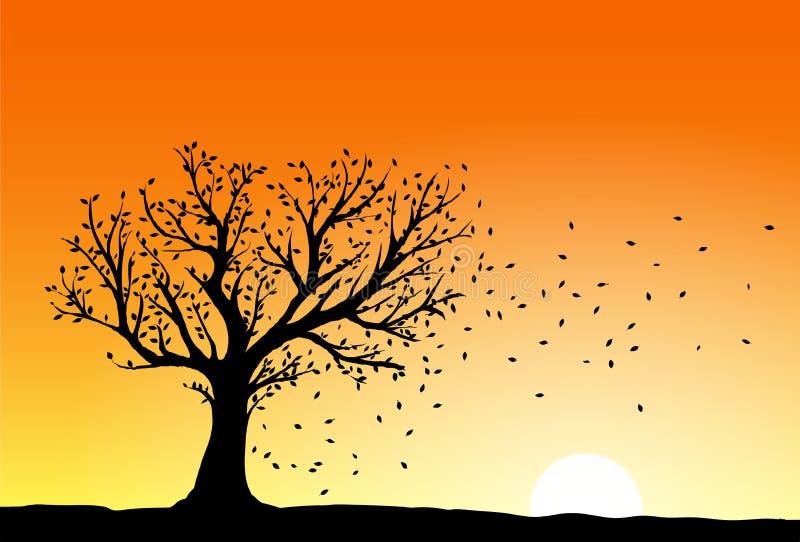 Autumn tree silhouette royalty free illustration