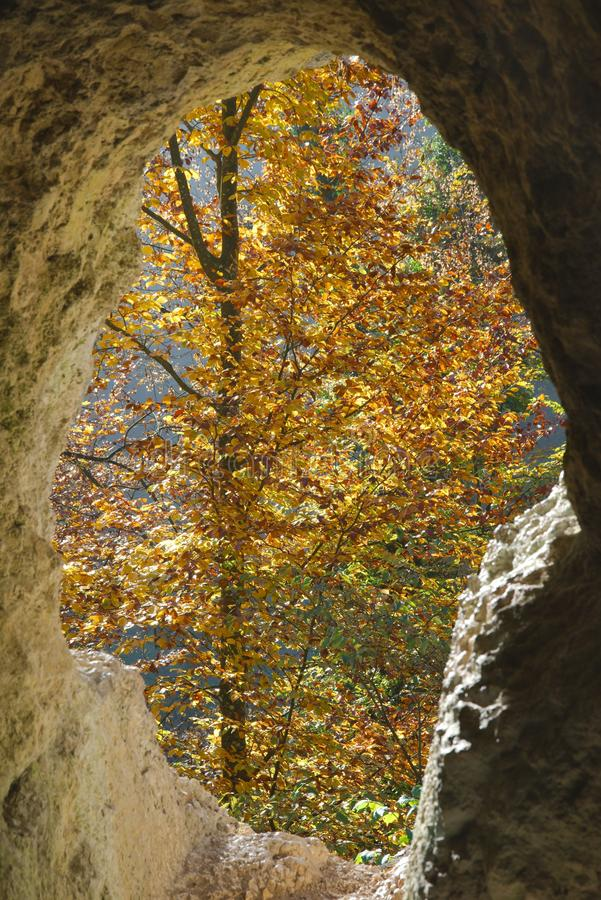 Autumn tree with yellow leaves through the hole of a cave. Autumn tree with yellow leaves through the hole of the Diana Grotto of Ermitage Arlesheim, Switzerland royalty free stock photos
