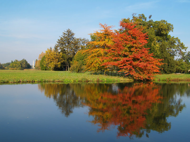Autumn trees. Beautifull colors of autumn trees in garden stock photography