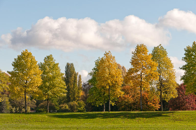 Download Autumn Trees stock photo. Image of autumn, color, scenery - 22065766