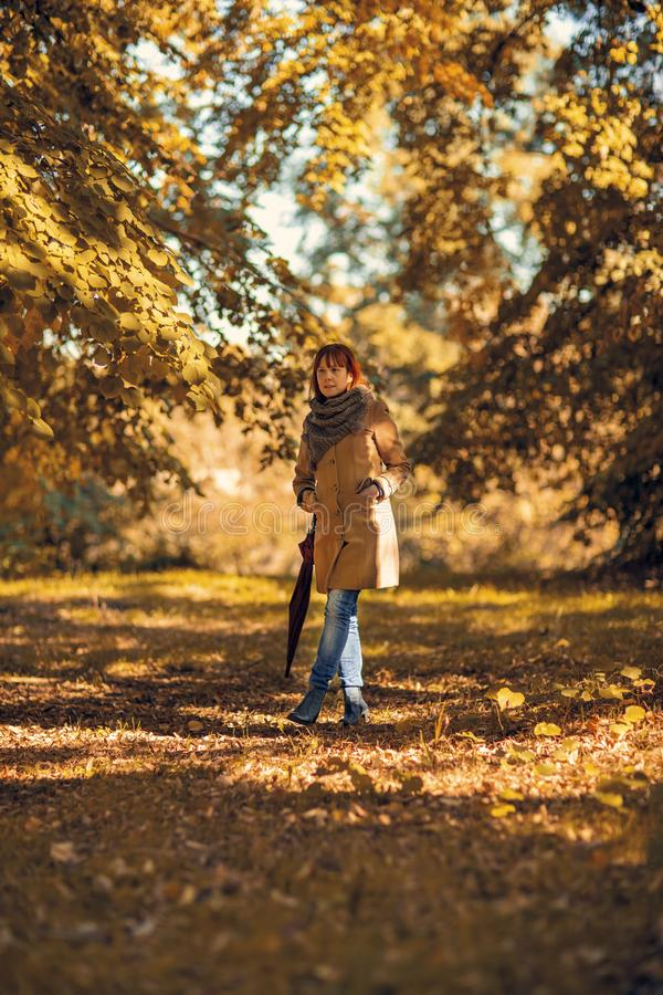 Autumn trees, fall season. Girl with umbrella walking in nature stock images