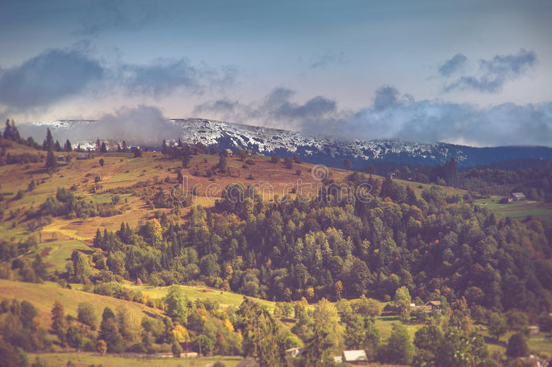 Autumn trees in the forest and snow-covered mountain in the distance. Filtered image:cross processed vintage effect royalty free stock image