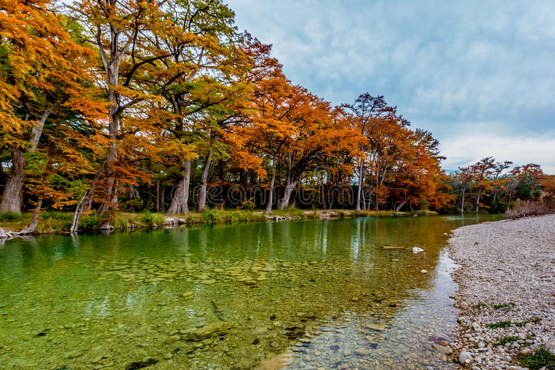 Autumn Trees in Frio-Fluss bei Garner State Park, Texas lizenzfreie stockbilder