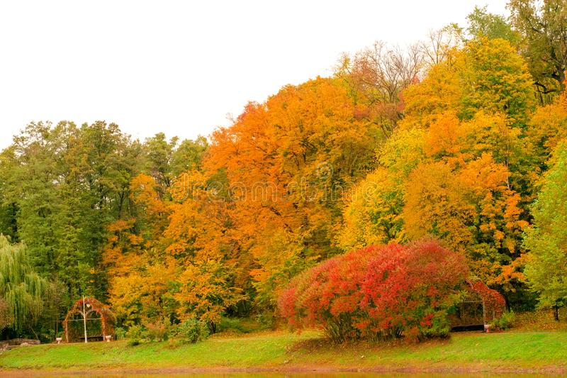 Autumn trees landscape view royalty free stock images