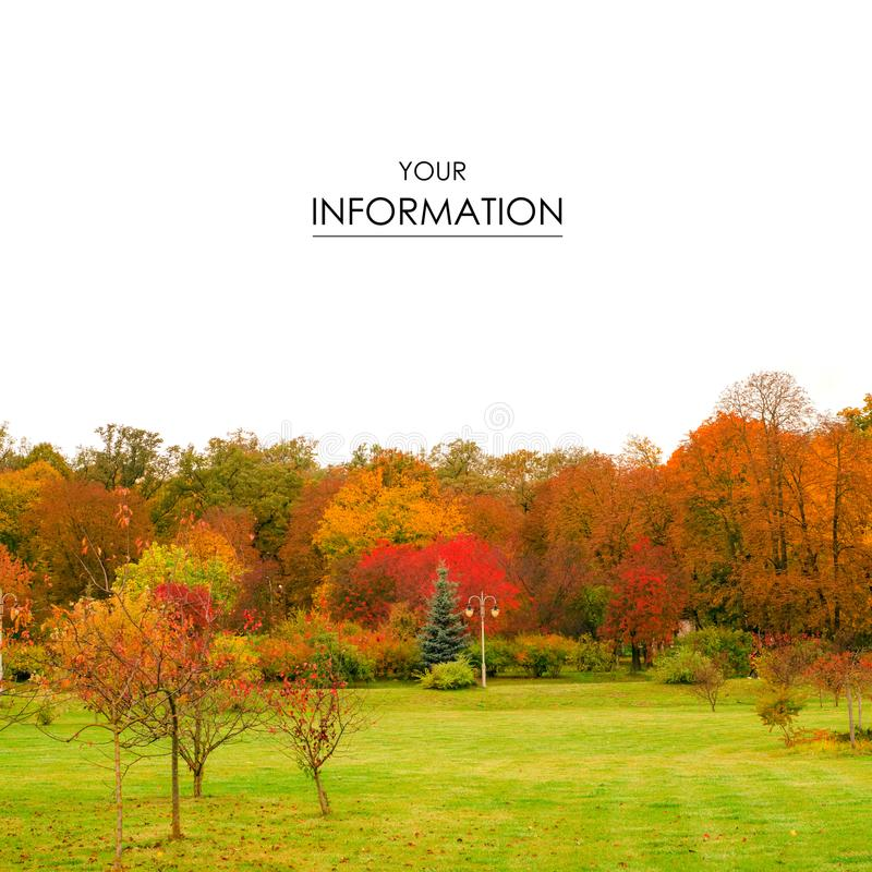 Autumn trees landscape view of yellow red orange leaves royalty free stock images