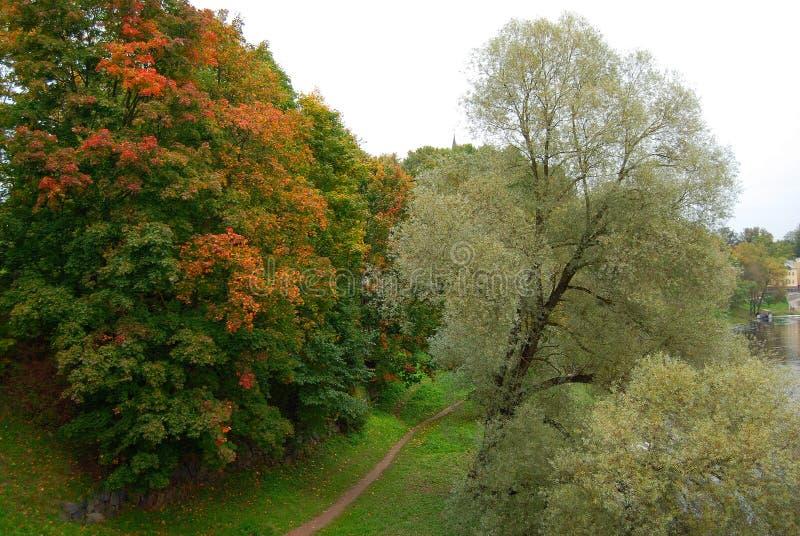 Autumn river royalty free stock photos