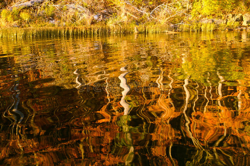 Autumn trees reflected in lake stock photos