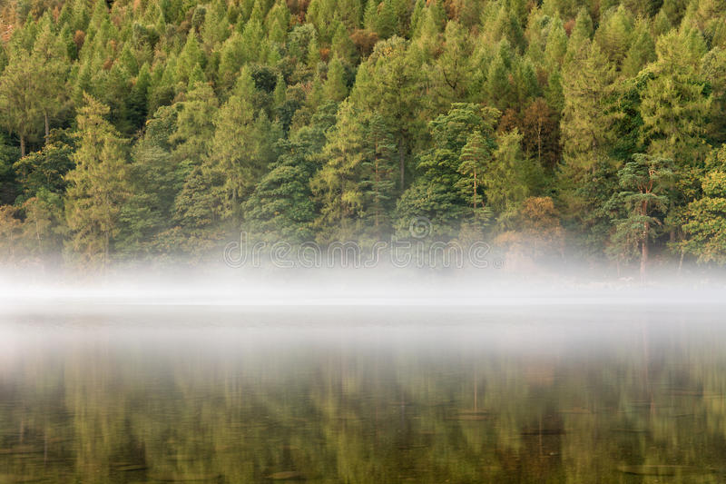 Autumn Trees Reflecting In Lake met Mist royalty-vrije stock afbeelding