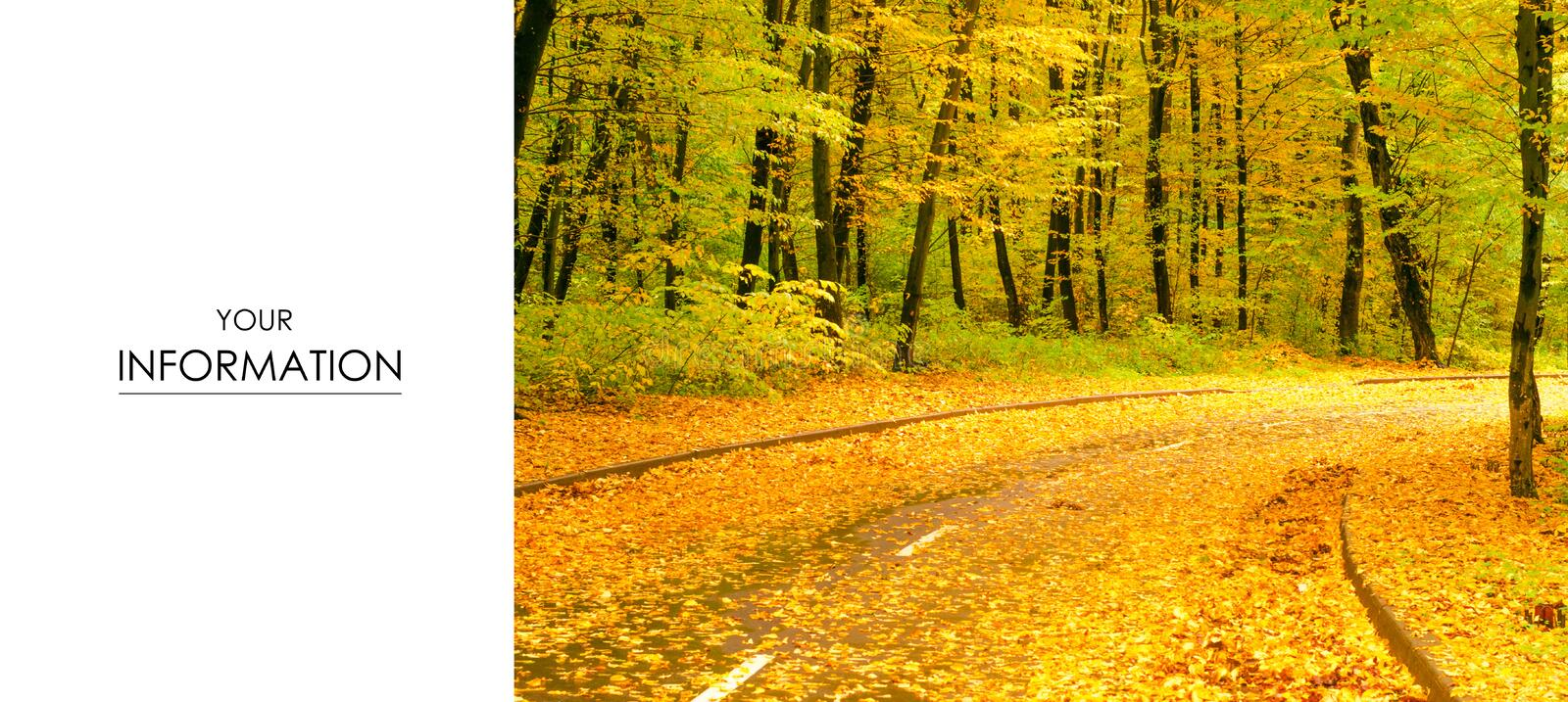 Autumn trees road landscape view of yellow red orange leaves royalty free stock photography