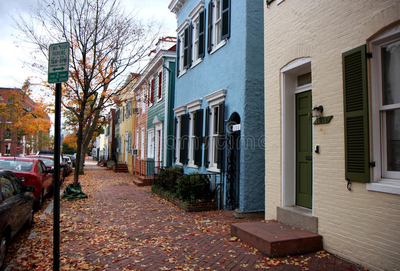 Download Autumn Trees On A Street In Washington Stock Image - Image: 16310791