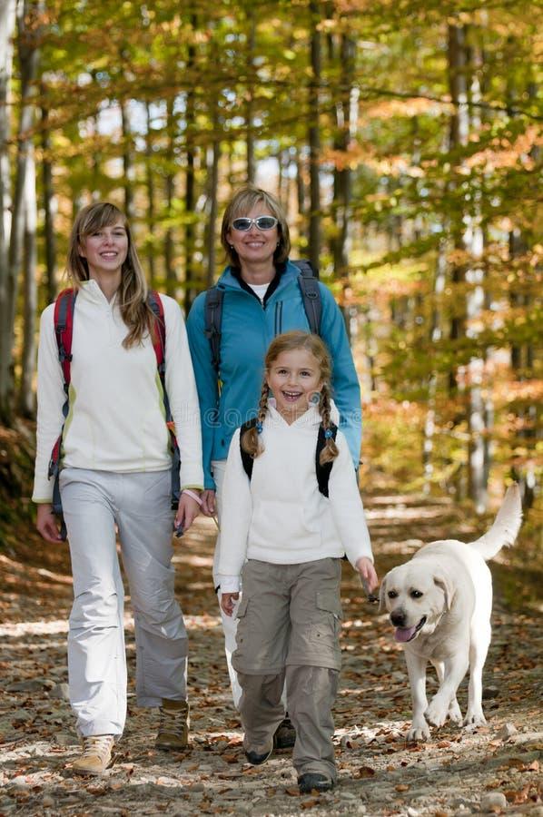 Autumn trek. Family with dog on autumn trek royalty free stock images