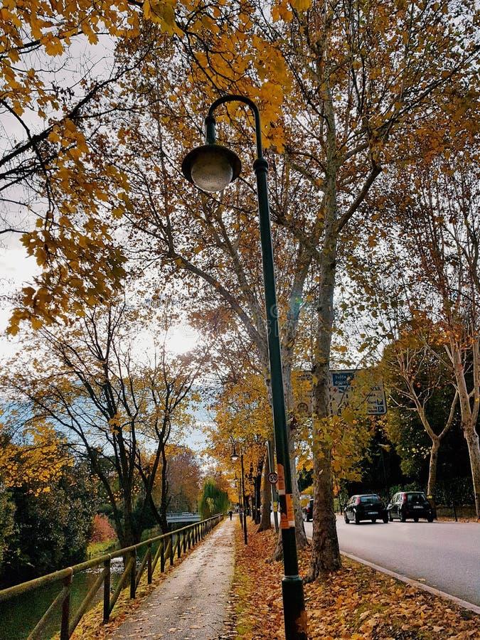 Download Italian Autumn stock image. Image of autumn, italy, italian - 105343707