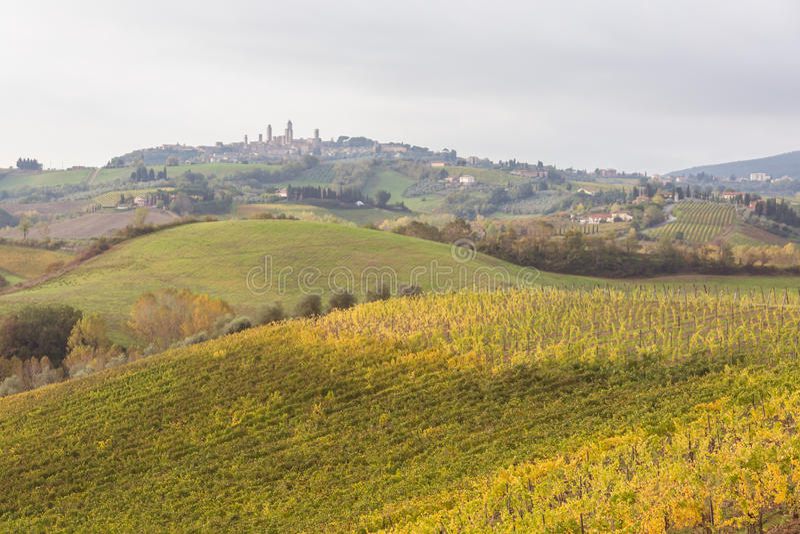 Download Autumn in Tuscany, Italy stock photo. Image of gimignano - 84299732