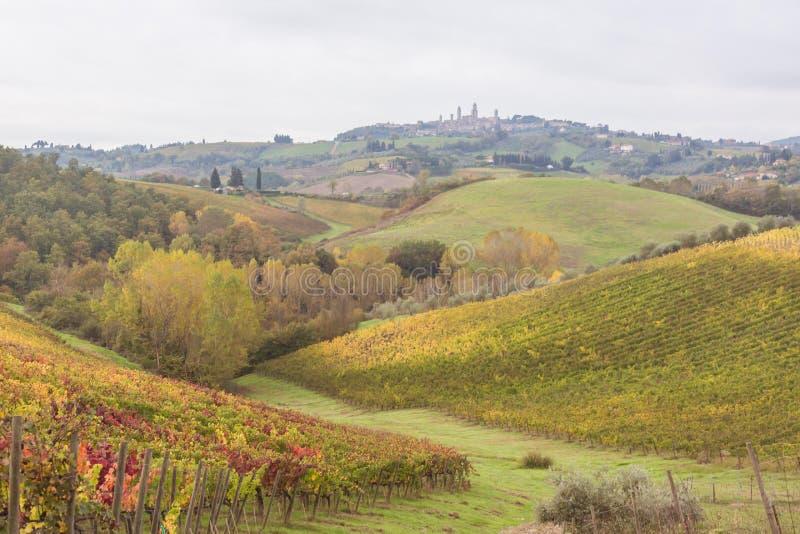 Autumn in Tuscany, Italy. Near San Gimignano stock photos