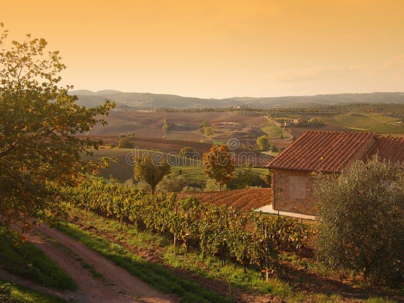 Autumn Tuscany landscape royalty free stock photography