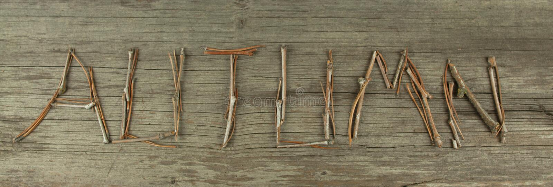 Autumn Twigs auf rustikalem hölzernem Brett stockfoto