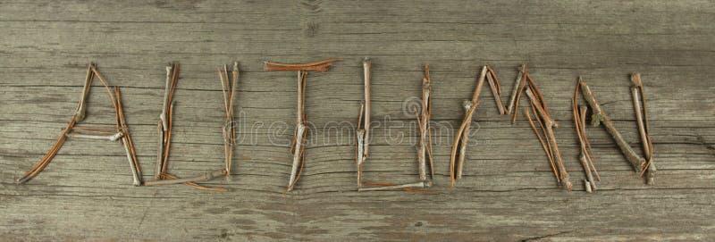 Autumn Twigs sur le conseil en bois rustique photo stock