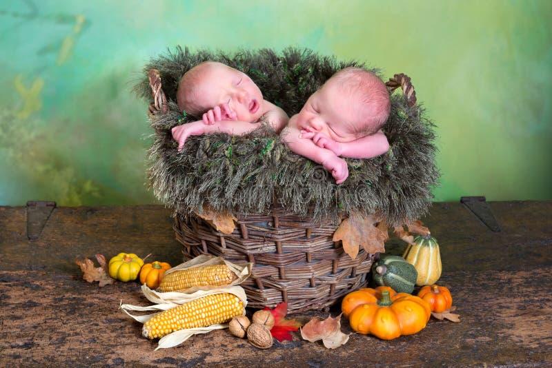 Autumn twins stock image