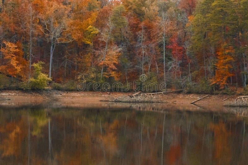 Autumn At un lac avec des niveaux de basse mer photo stock