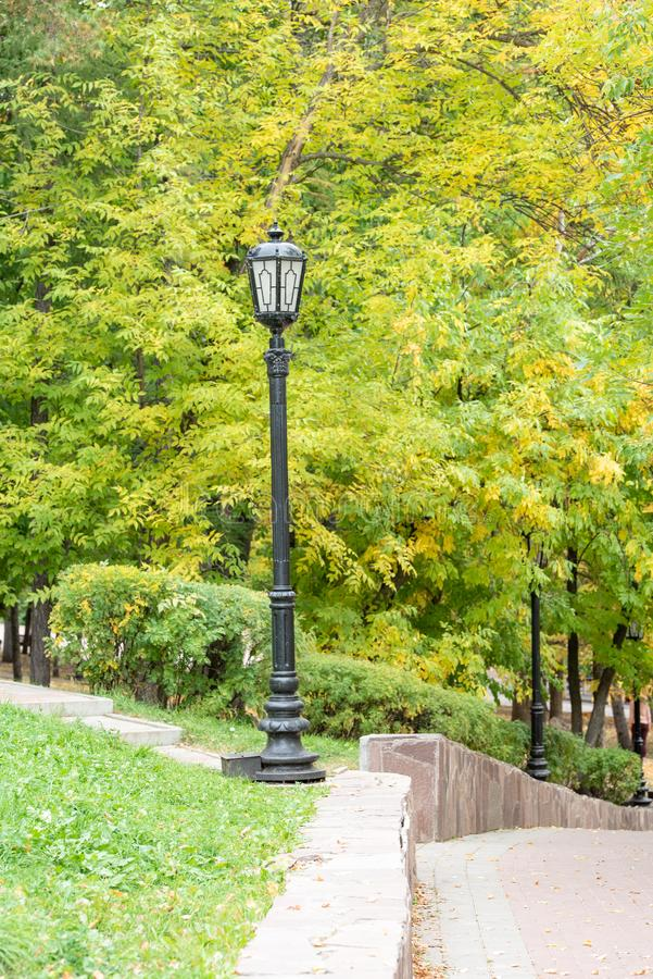 Autumn urban park with yellow trees. And foliage stock photography