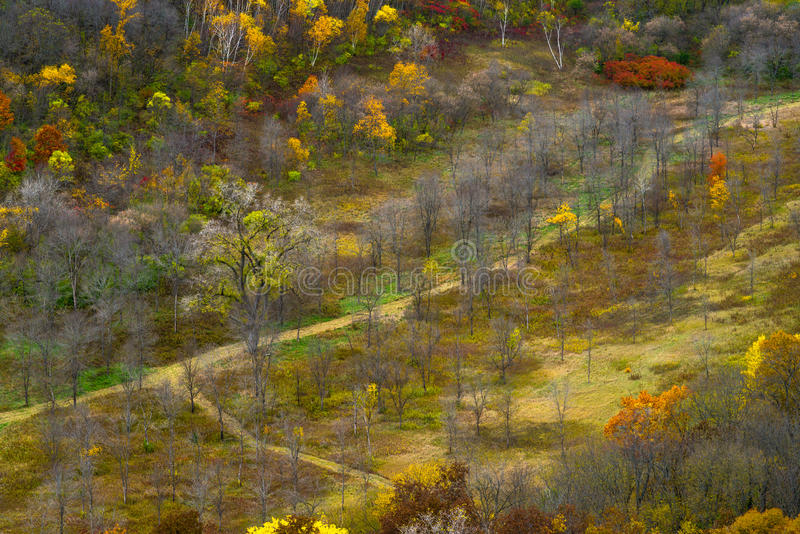 Autumn valley, river bluffs state park royalty free stock images