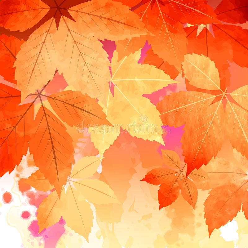 Autumn Vector Watercolor Fall Leaves. Watercolor vector autumn fall leaves, artistic abstract background royalty free illustration