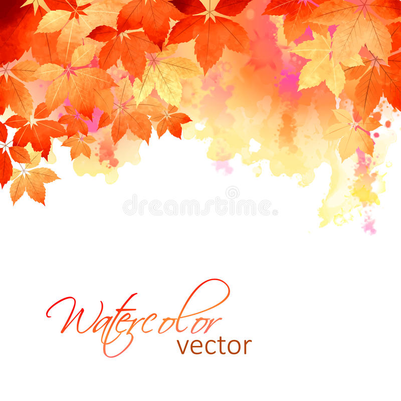 Autumn Vector Watercolor Fall Leaves royalty free illustration