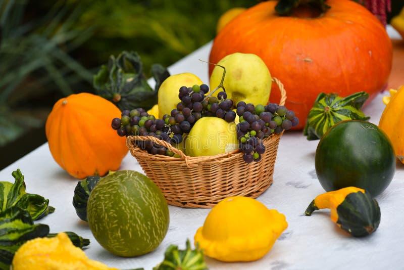 Autumn Vegetables lizenzfreie stockfotografie