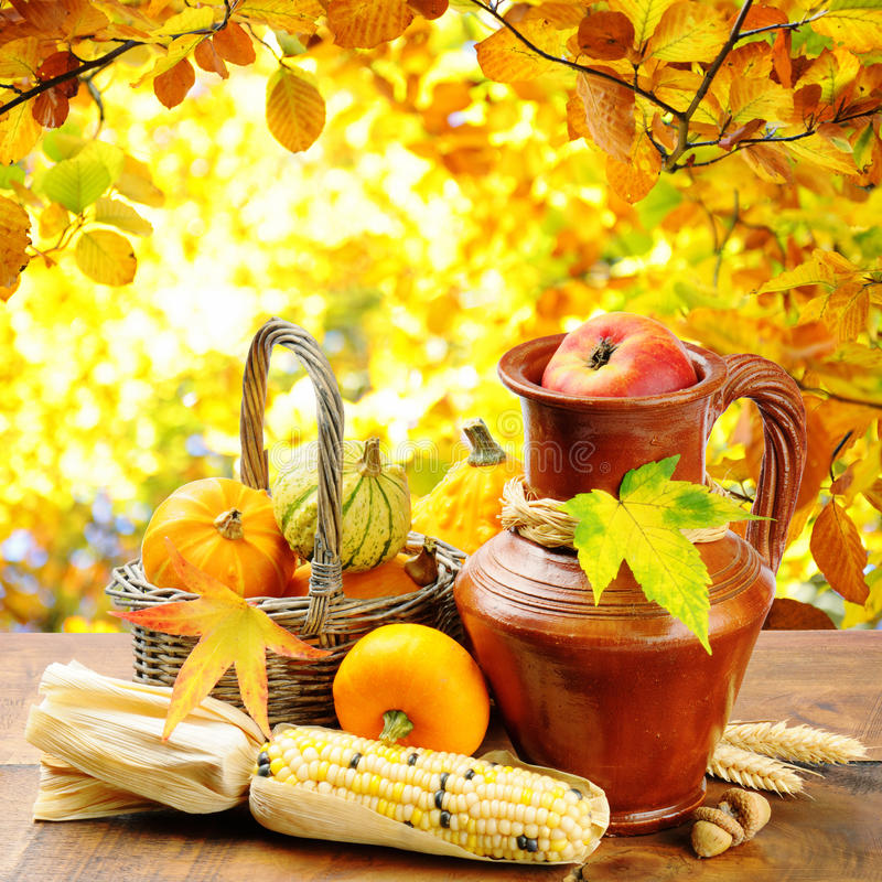 Autumn vegetables on golden forest background stock image