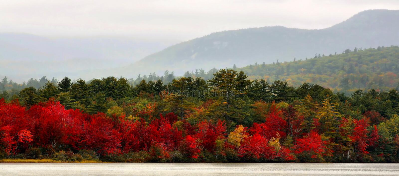 Autumn In Vermont Panorama royalty-vrije stock foto's