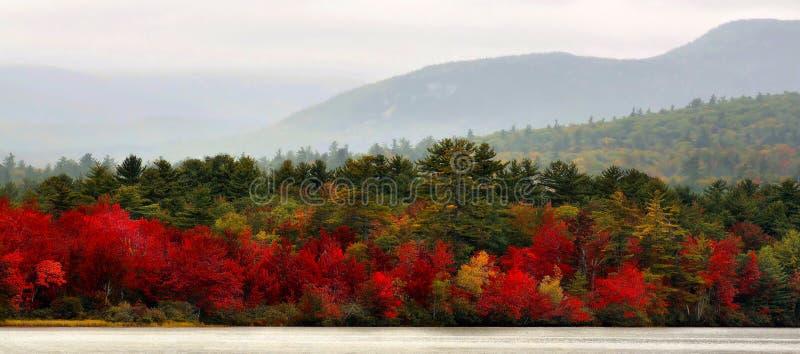 Autumn In Vermont Panorama royaltyfria foton
