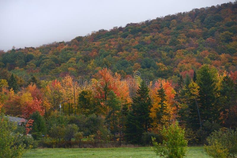 Autumn vermont royalty free stock photos