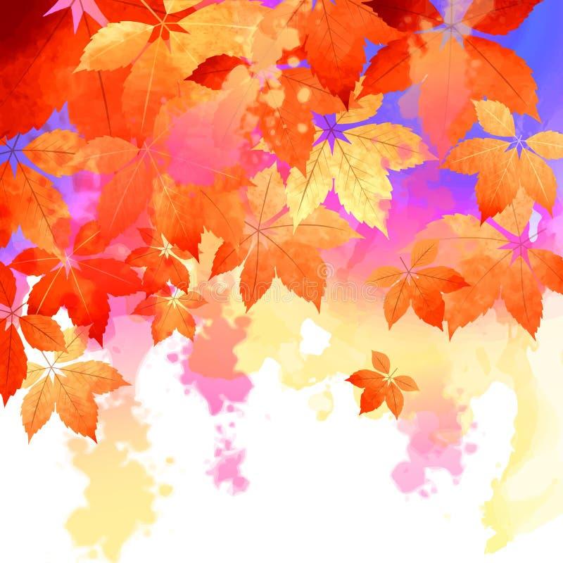 Autumn Vetora Watercolor Fall Leaves ilustração stock
