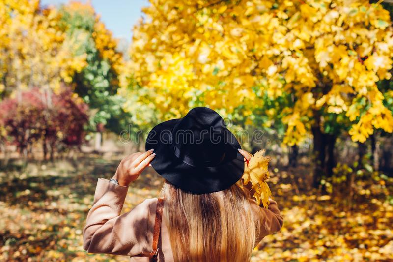 Autumn vibes. Young woman walking in autumn forest among falling leaves. Traveller admires nature royalty free stock images