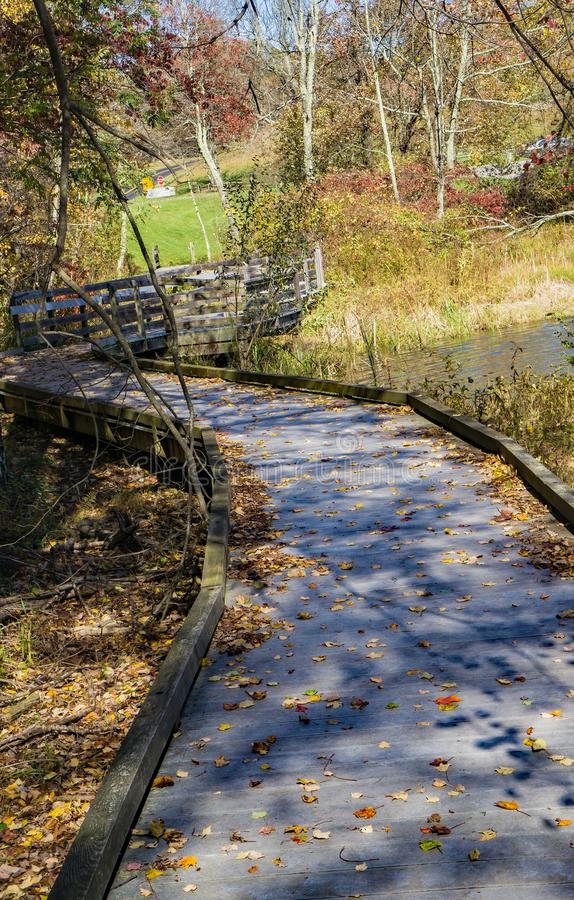 Autumn View of the Boardwalk by Abbott Lake royalty free stock image