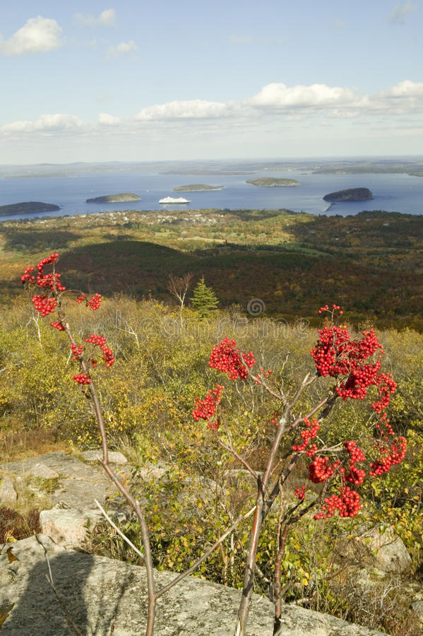 Autumn view from 1530 foot high Cadillac Mountain with views of the Porcupine Islands, Frenchman Bay and Holland America cruise sh. Ip in harbor, Acadia national stock images