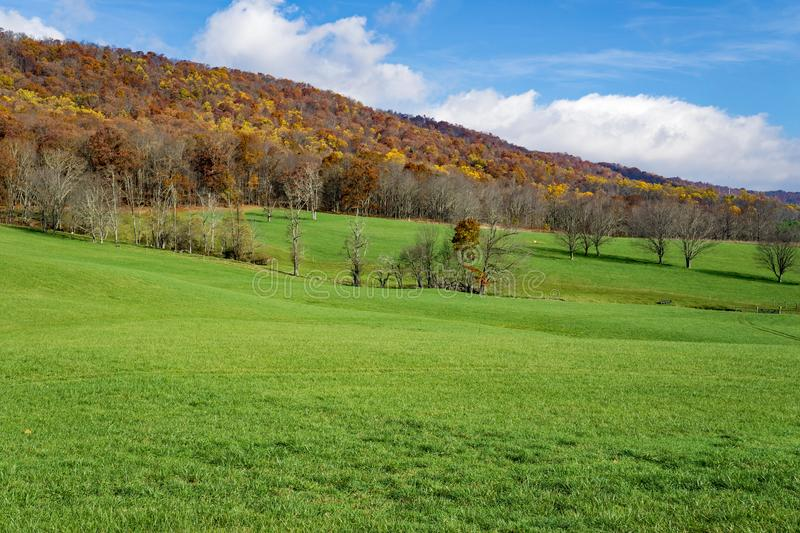 Autumn View from Johns Creek Mountain - 3. Autumn view from Johns Creek Mountain with a green meadow in the foreground located in Jefferson National Forest royalty free stock image