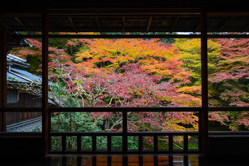 Autumn view of maple trees in vibrant fall color framed by a Japanese wood balcony royalty free stock photos